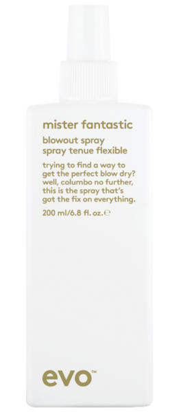 EVO MISTER FANTASTIC blow out spray