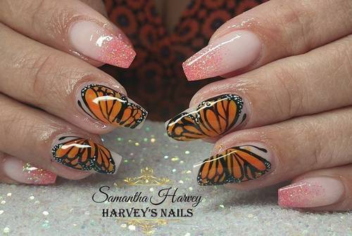 Ombre with hand painted Butterfly's