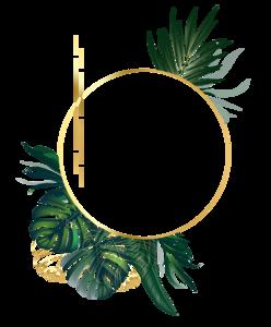 Logo jrnewlogo